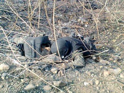 29 muertos en nayarit no fue enfrentamiento fue emboscada